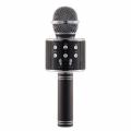 Ws-858 Bluetooth Mikrofon Sihirli Karaoke Aux Sd Card Fm Radyo